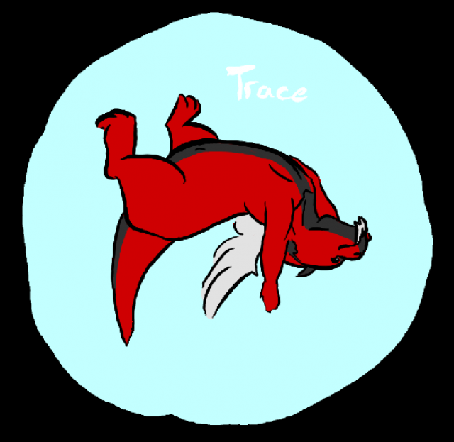 Trace Badge rond