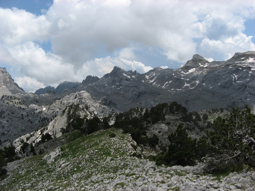 35-Billare-Penebl-TRois