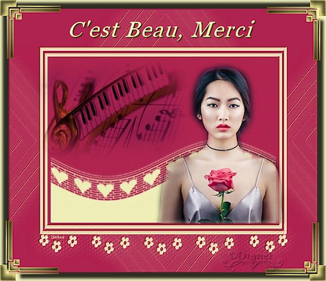 Recueil inédit Voyage au Pays des Rêves ... Le Pianiste 18071307380673532