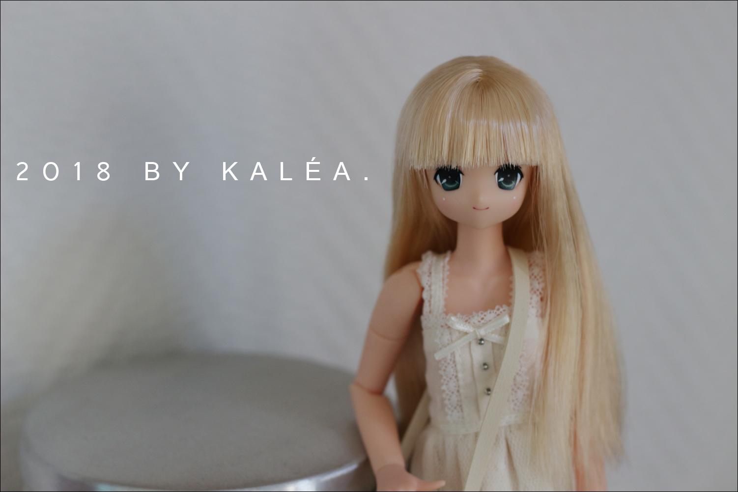 VENDS - Pure neemo, barbie repaint prix baissé - Pullip FC 180717074946918194