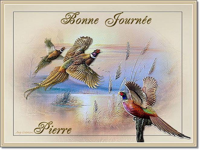 """1 """"bon vendredi"""" - 3 """"bonsoirs"""" - 2 """"bonjours"""" 180718040826681418"""