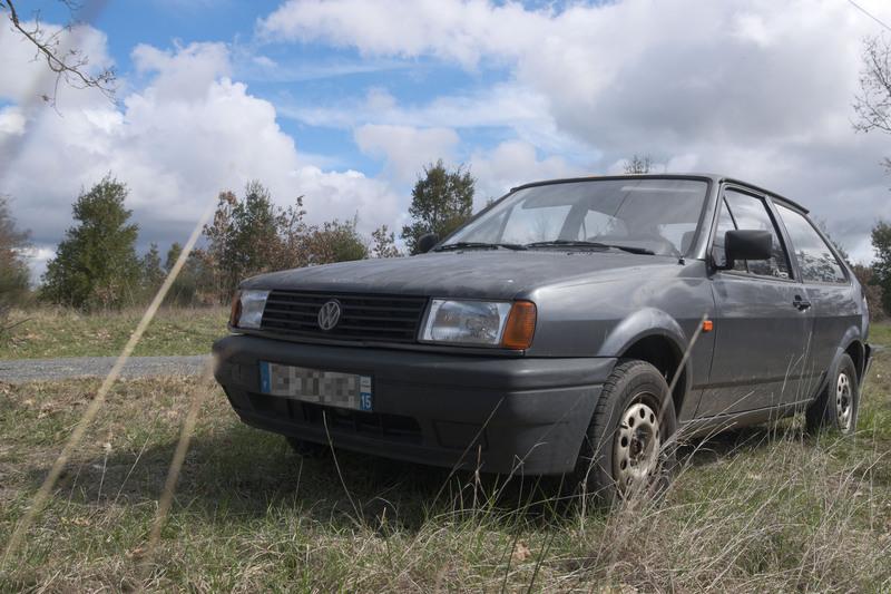 Polo 87C 2F 1993 Gris Perlé 180721064746511843