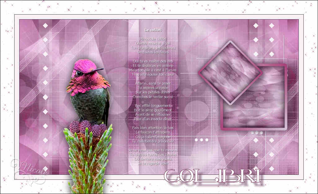 Colibri (Psp) 180731093025508115