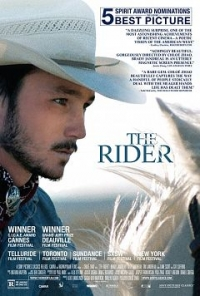 The Rider(2017) poster image