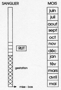 L'Euralie pays à archiver svp - Page 6 180816013015793598