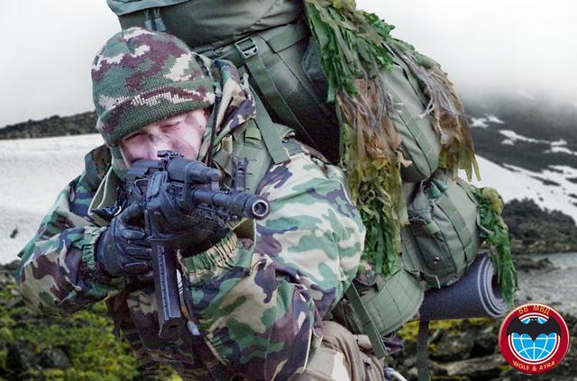 Impression reconnaissance VV MVD, 2010 180816095858410147