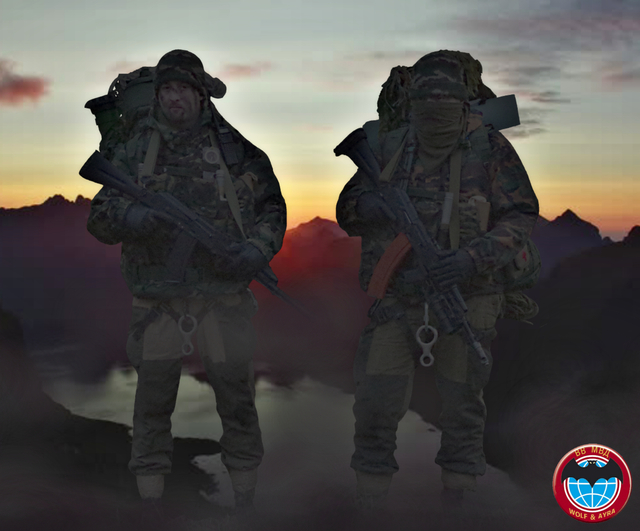 Impression reconnaissance VV MVD, 2010 180816100445662230