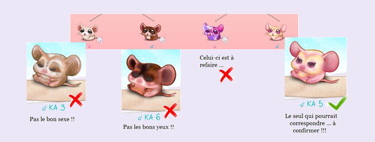 Entrez et tapons la causette (archive 6) ... - Page 3 180820110929567618