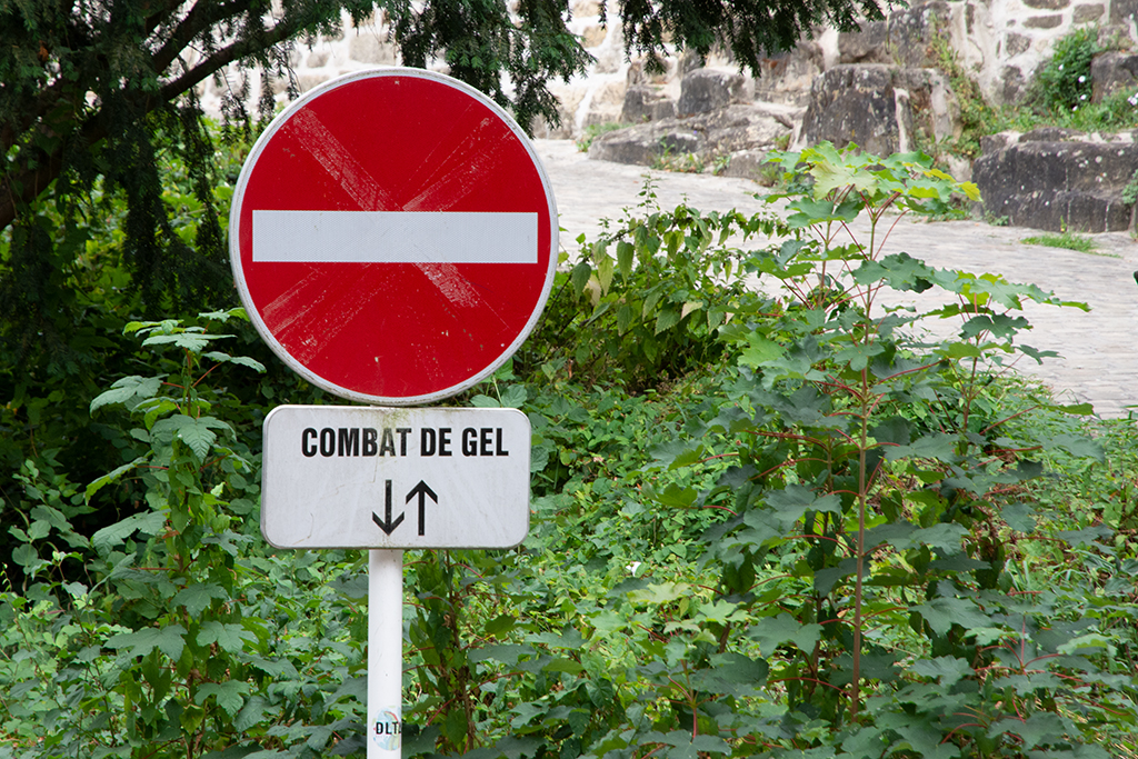 Combat de Gel 18082206415289472