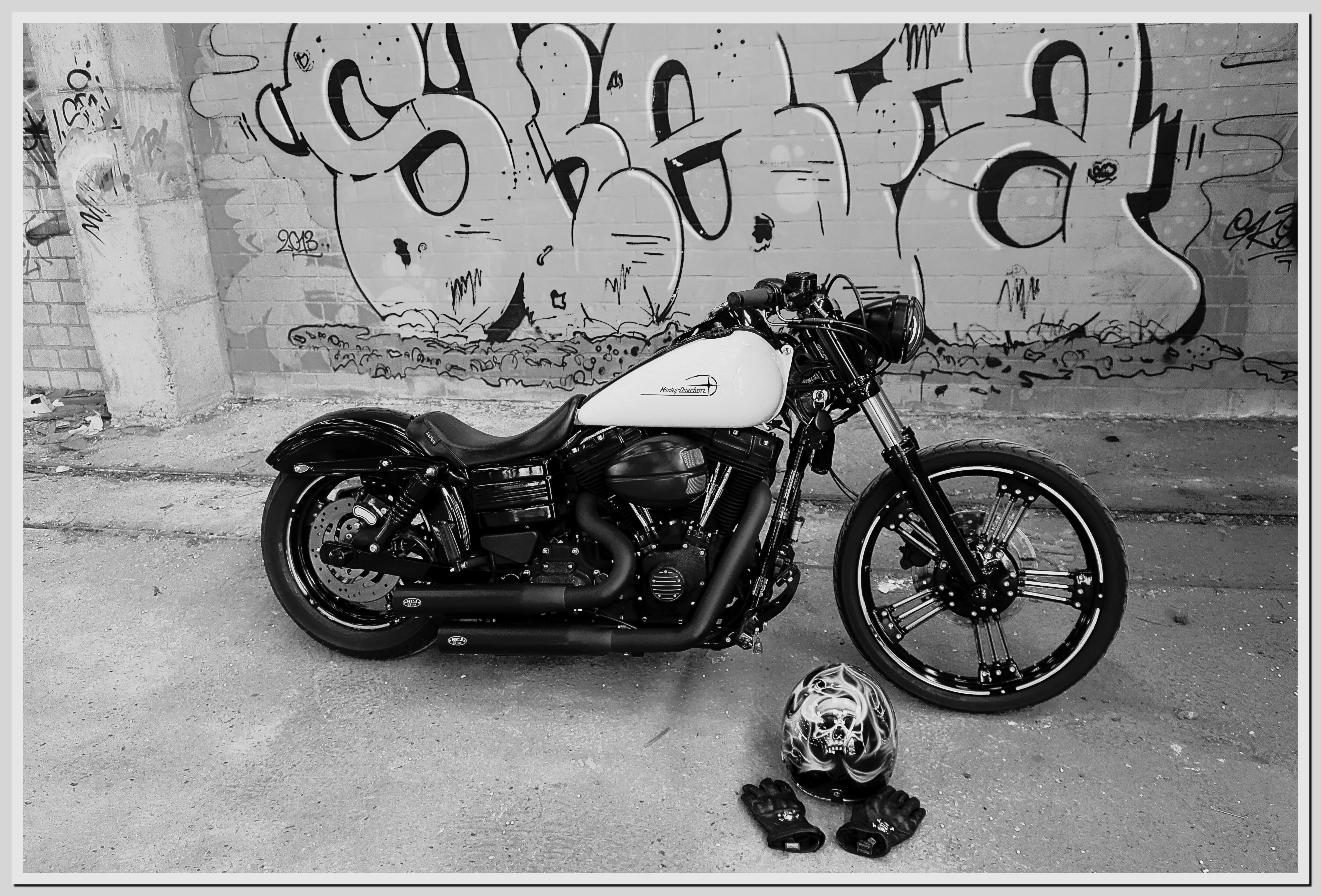 Bob black and white