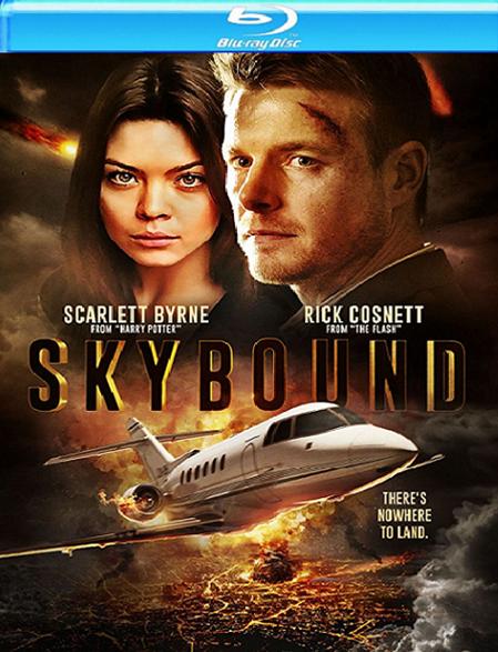 Skybound (2017) poster image