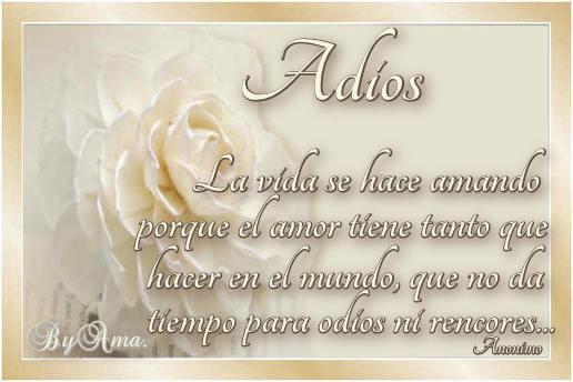 Rosas Color Tiza, con Frase 180908025751649738