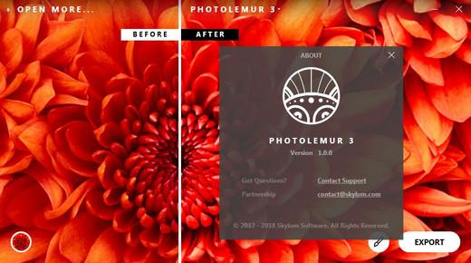 Photolemur 3 v1.0.0.2172 Multilingual 180913031102532676