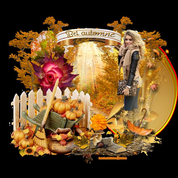 Mon bel automne   ( psp) 180925084648902812