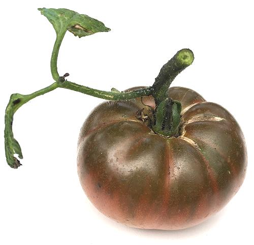 Photos de tomates 181007020508983826