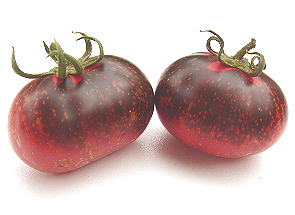 Photos de tomates 181008114359955368