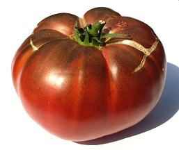 Photos de tomates 18100901054071720