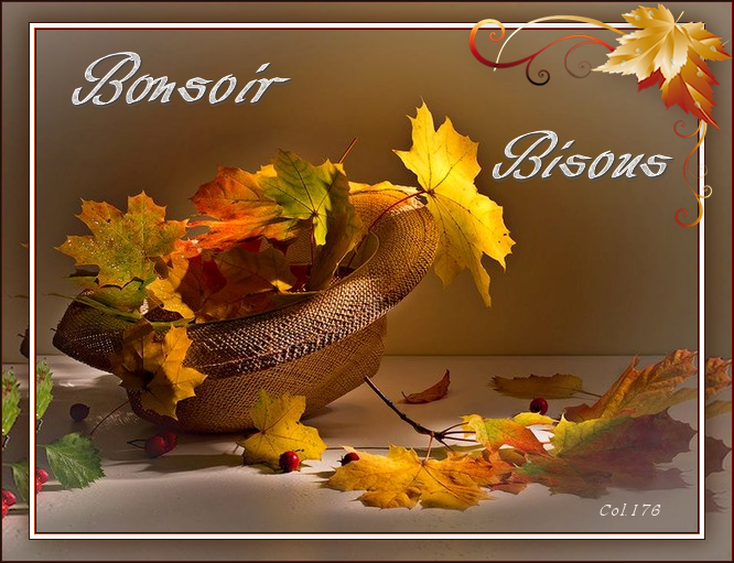 Bonjours/Bonsoirs Automne 2018 181011101502440167