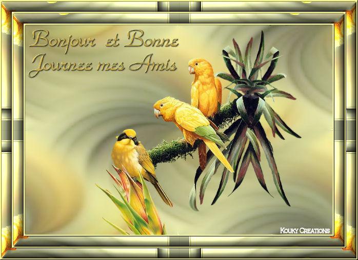 Bonjours/Bonsoirs Automne 2018 181011104311771961
