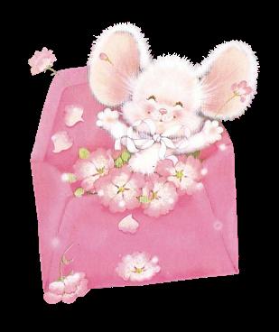 18 570079Souricette_blanche_ds_enveloppe_fleurie