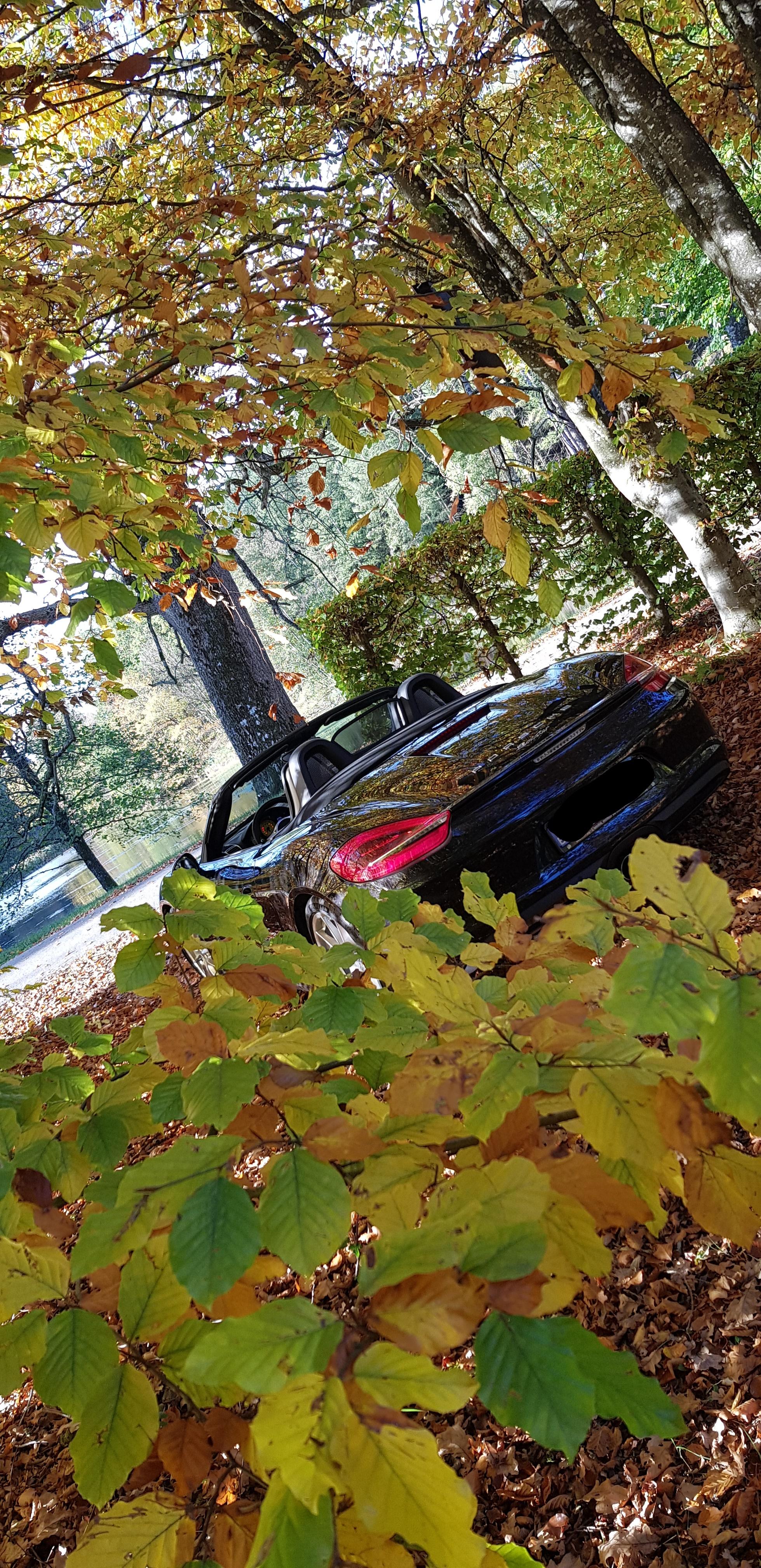 L'automne - Page 3 181028104510562272