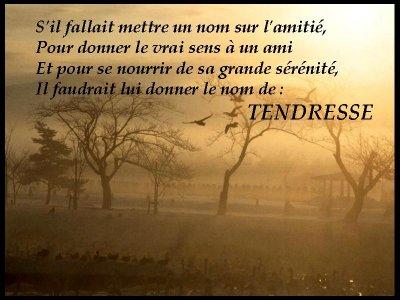 59 D 666652amitie_mettre_un_nom_..._tendresse