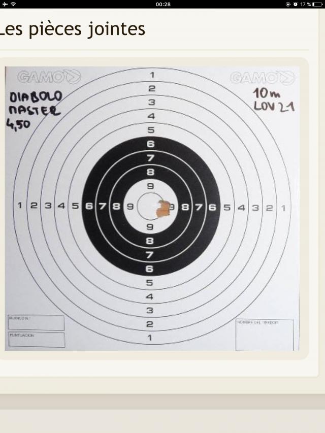 Choisir un monocoup sérieux à prix serré [50-150 euros] pour tirer à la cible à 10m ou moins. - Page 6 181030123027252505