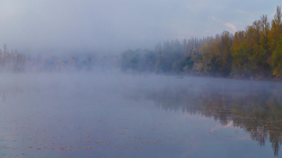 Couleurs d'automne 181031061841618752