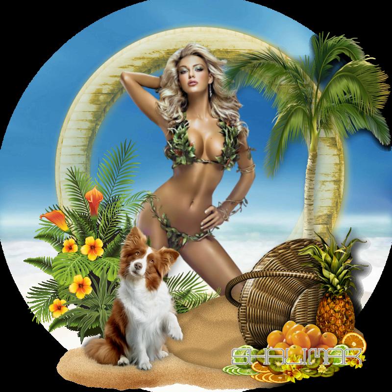 Beach-dream(scrap) 181107080407652331