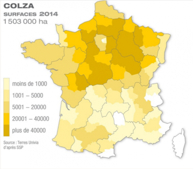 Blocage de la France le 17 Novembre contre le prix des carburants - Page 5 181109100227286195
