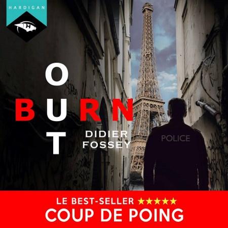 Didier Fossey - Série Les enquêtes du commandant Boris le Guenn (1 Tome)