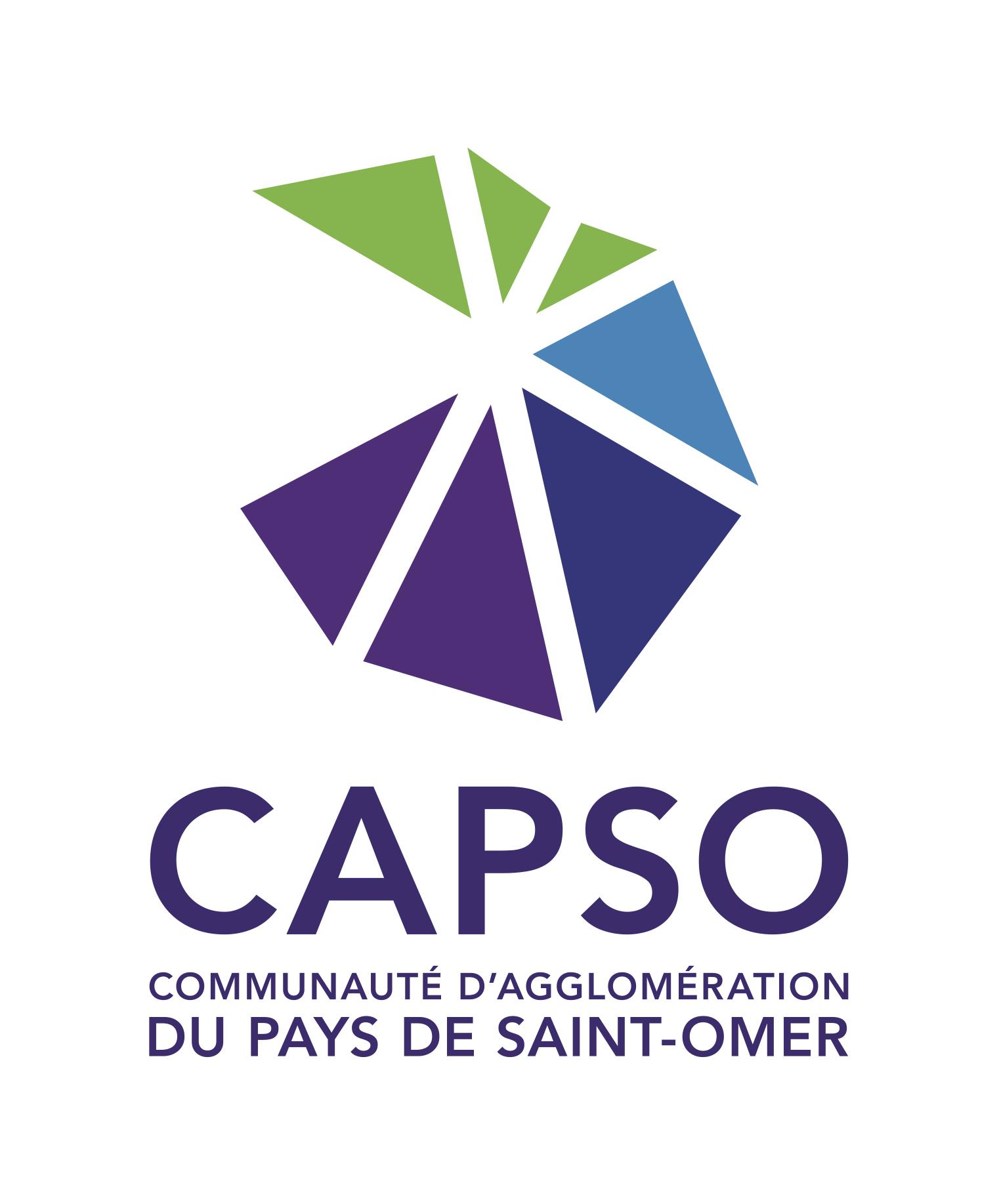 LOGO CAPSO CMJN