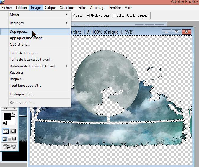 Tuto decomposer une image  pour en faire une animation 181112010337841126