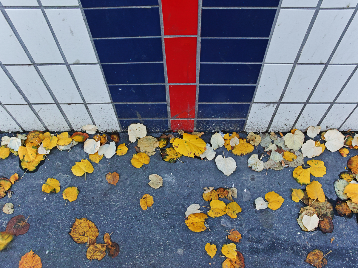 """thème du jeu de Novembre """"Couleurs d'automne"""" 181114021319252652"""