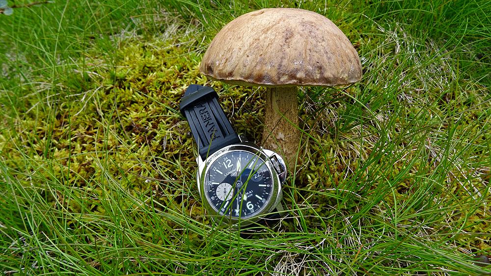 Feu de vos Dual Time - GMT - Worldtimer - Page 34 181114062516867659
