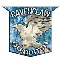 Badges de Quidditch Mini_181114043000354026