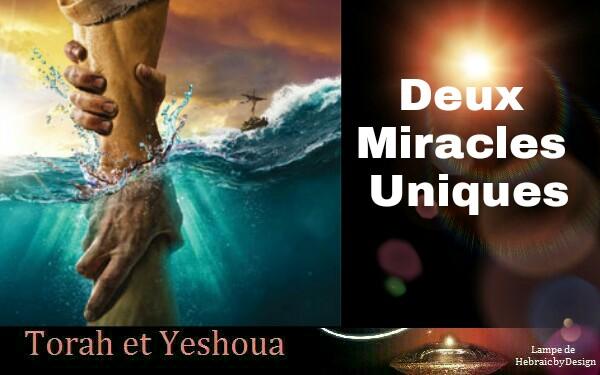 Deux Miracles Uniques 181123033543715787