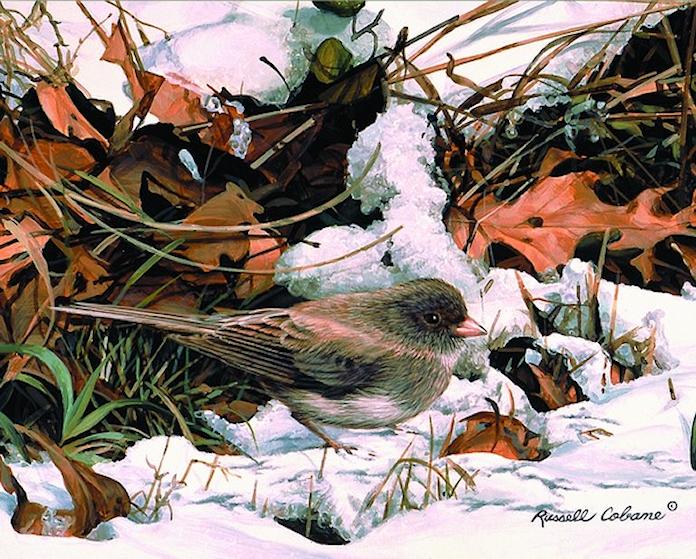 Paysages d'hiver ... 181123110829948724