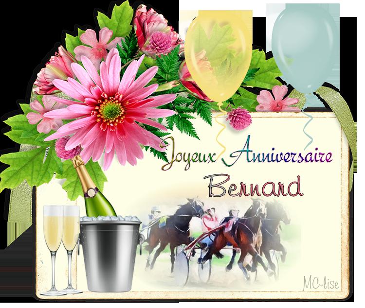 JOYEUX ANNIVERSAIRE BERNARD 181124015918259197