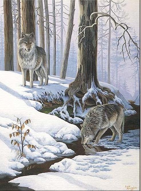 Paysages d'hiver ... 181202110606148782