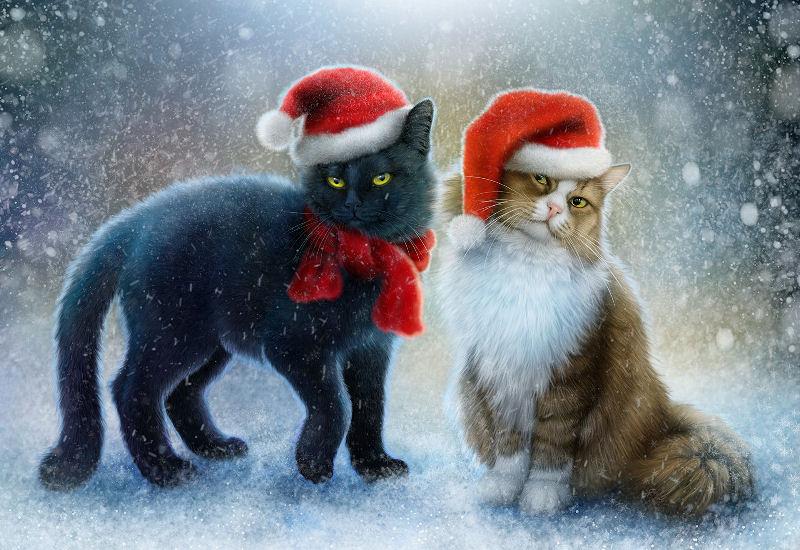 Paysages d'hiver ... 181207020837517793