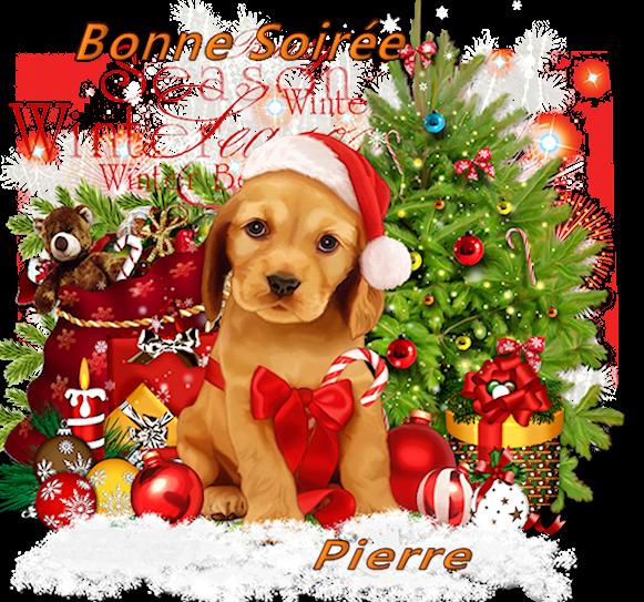 Bonjours/Bonsoirs d'Hiver 181210072518214977