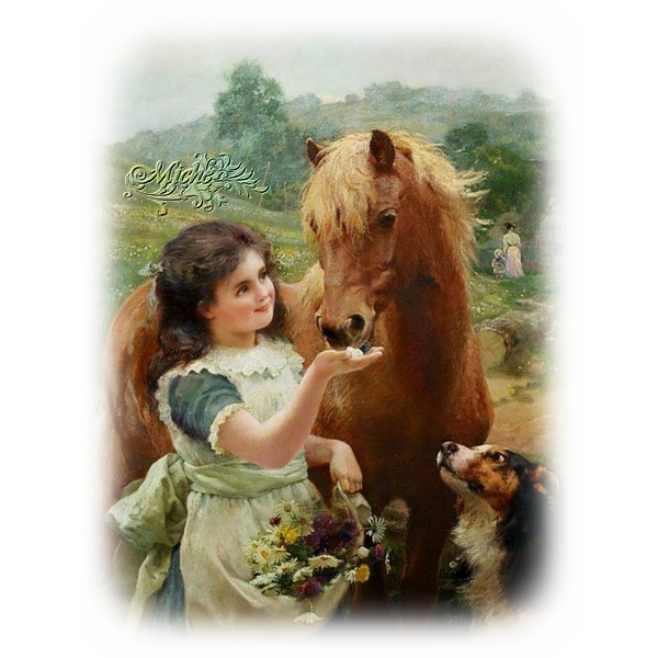 108.tendresse.cheval