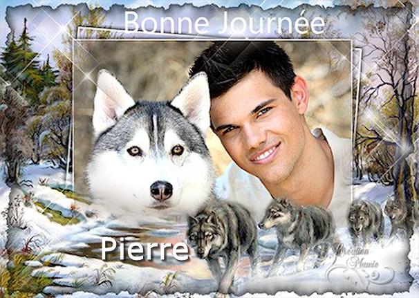 Bonjours/Bonsoirs Fêtes et Hiver 181215042526494019