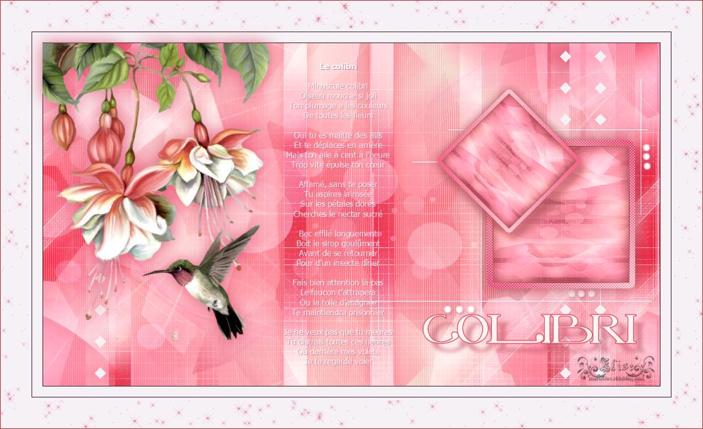 Colibri (Psp) 190103023324405070