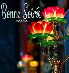 fb2d65523a47cd1cafea1456fd56aa0a--belles-images-france