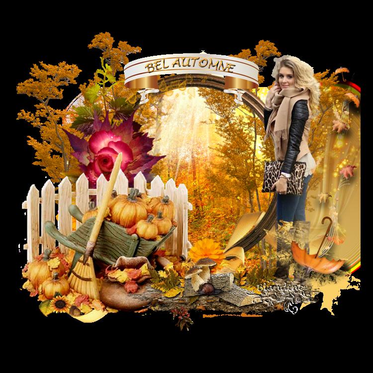Mon bel automne   ( psp) 190113072452579058